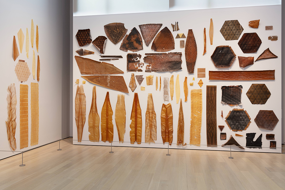 Installationsansicht von Neri Oxman: Material Ecology, The Museum of Modern Art, New York, 2020.