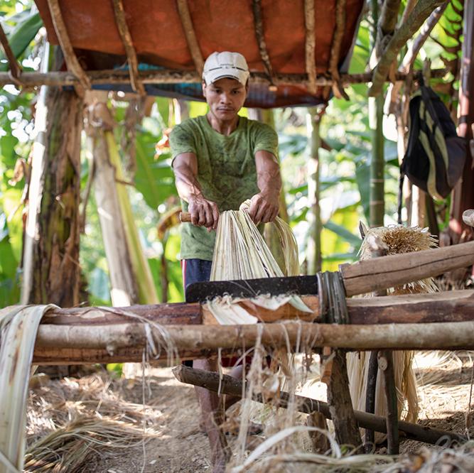 Qwstion nutzt Fasern der Abacà-Pflanze für Rücksäcke