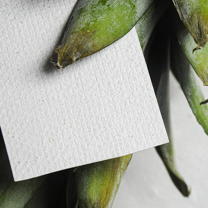 Paper from left-over pineapple leaves